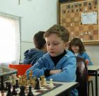 Арад Шахматы ИПИ центр творчества  выборы мэр