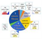 выборы в Араде